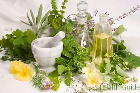 7 herbs that have healing properties