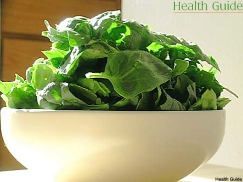 The secrets of spinach