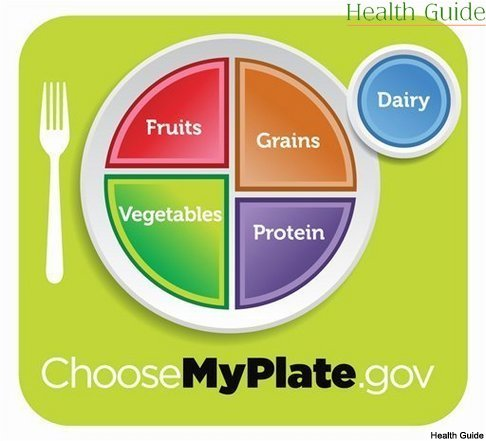 My Plate replaces Food Pyramid