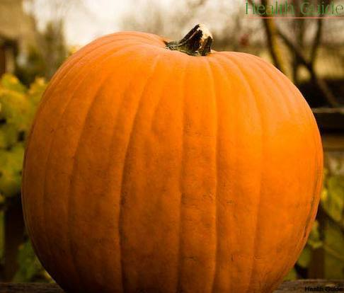 Why you must eat pumpkin