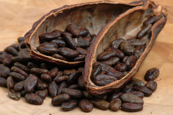 The benefits of cocoa