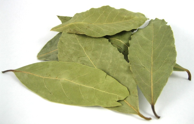 How to use laurel leaves for treatment?
