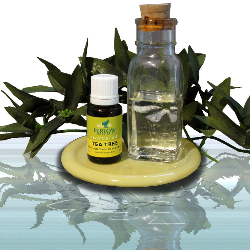 The benefits of tea tree oil