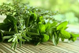 6 herbs that will help you to lose weight