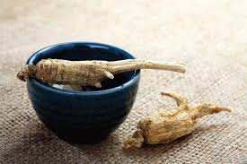 Ginseng for your health and youth
