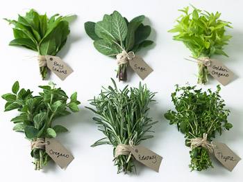 Immunity enhancing herbs that you should add to your dishes