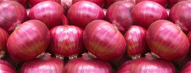 Onion – a natural medication that can help you every day