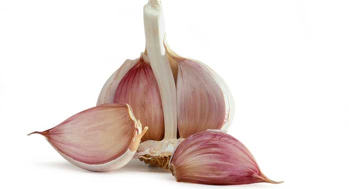 Garlic can fight oncologic problems